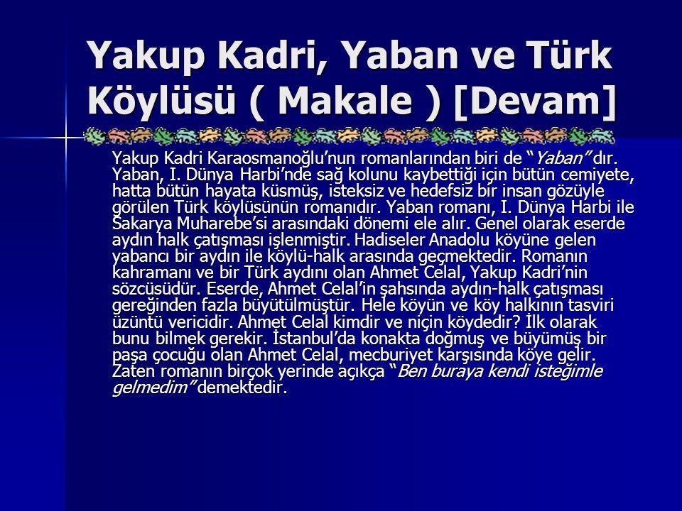 Yakup Kadri, Yaban ve Türk Köylüsü ( Makale ) [Devam]